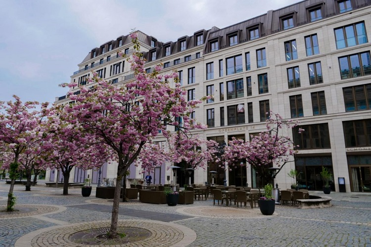 Kanzlei Frankfurt 2